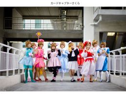 Card Captor Sakura by josephlowphotography