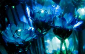 Frozen Bloom by endprocess83