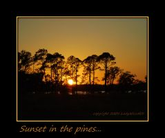 Sunset In The Pines by LadyAliceofOz