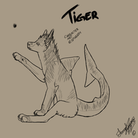 Tiger scetchy by Spike654
