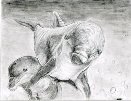 Dolphins by Penastuff