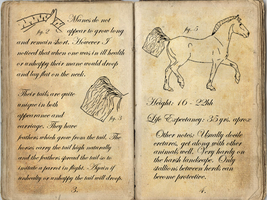 CJC Field Notes: Anatomy Cont. by Orstrix