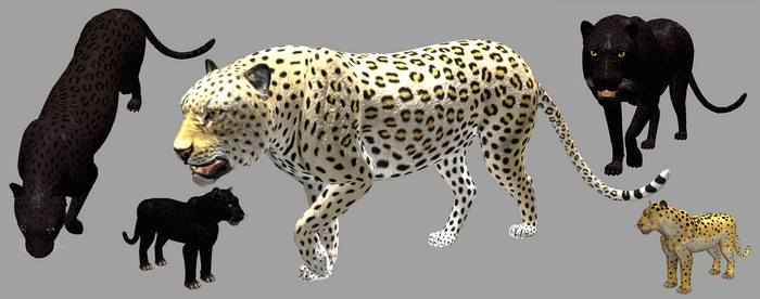 Spore vs real 3d African Leopard by Evilution90