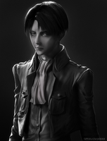 Levi by tetsuok9999
