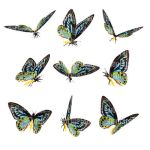 Butterfly Stock 9 by Shoofly-Stock