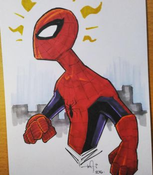 Spidey by kaicastle