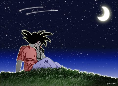 Goku and Chi Chi- Summer night by GokuxMilk