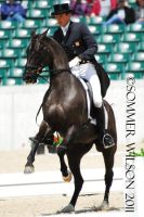 Boyd Martin Dressage by zeeplease