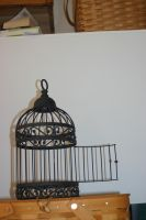 Bird Cage 4 by cstarr-stock