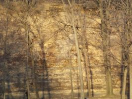 Shadows On The Golden Cliff by Xavasia