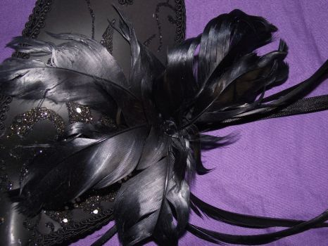 Mask 7-Close up of feathers by LadySarah-Stock