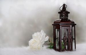 Antique Lantern by Photolover68