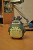 Totoro by Cathysa