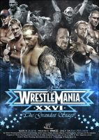 Wrestlemania XXVI Take two. by ZT0