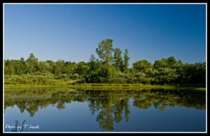 Peaceful Reflections by tleach0608
