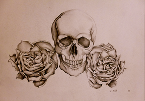 Skull and roses by ONichollsArt