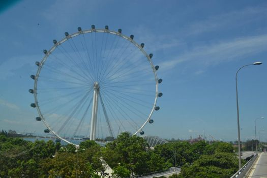 The Singapore Flyer by sharahime