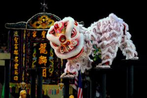 Lion Dance Performance-4 by DawnRoseCreation