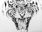 Tiger fineliner pen drawing by yun-hui-lee