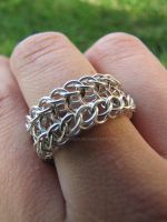 Half-Dragonback Ring Detail by ArmoredKoi