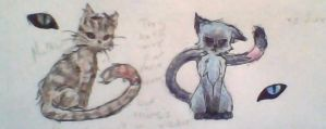 Mathias and Chie cats by Portmanteal