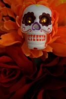 Day of the Dead by KarahRobinson-Art
