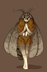 Moth Woman by Morgoth883