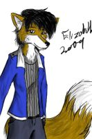 Elizabith 2009 Redesign by Cane-McKeyton