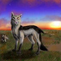 Sunset Mightyena by D34tHn0Te