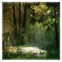 In Forest by Fantasy-Fellowship