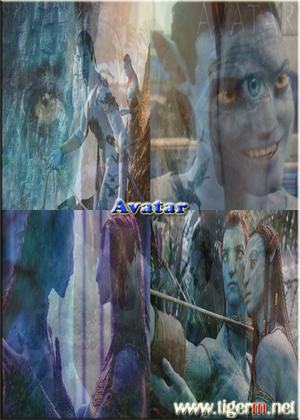 Avatar Movie TIGERM.NET