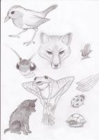 various animals by Aerin35