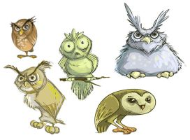 Owl sketches by ecaines