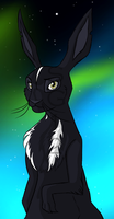 Watership Down OC Brokenstar by The-Ravens-Of-Moraea
