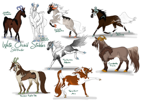 White Orchid Stables - Stats by Blackbiene