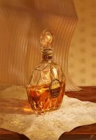 Cognac by inSOLense
