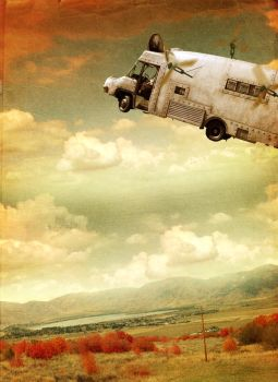 When Pigs Fly by allison712