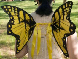 Tiger Swallowtail Fairy Wings by The-GoblinQueen