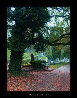 a place to rest in cemetery by ad-shor