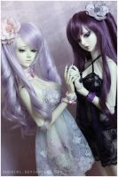 Shades of purple I by sherimi