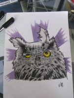 owl by vilester