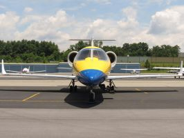 Learjet 60 Stare Down by InDeepSchit