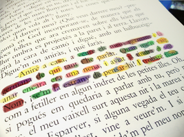 Some text lines by Endber