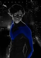 Nightwing by AmoonaSaohin