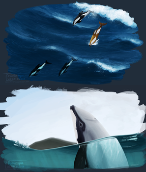 People of the southern seas by namu-the-orca