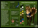 Kinari refrecnce sheet 2009 by PinkScooby54