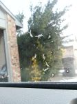 ((A Snow Flake on the Window by 2pJapan