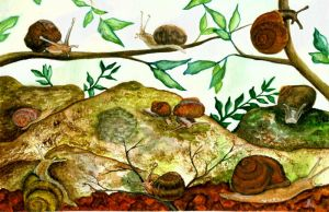 Snails Glorious Snails by stuwaha