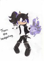 Thorn The Hedgehog by SilverWolfGal1