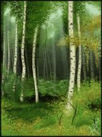 Silver Birch by NiAlexanderArt